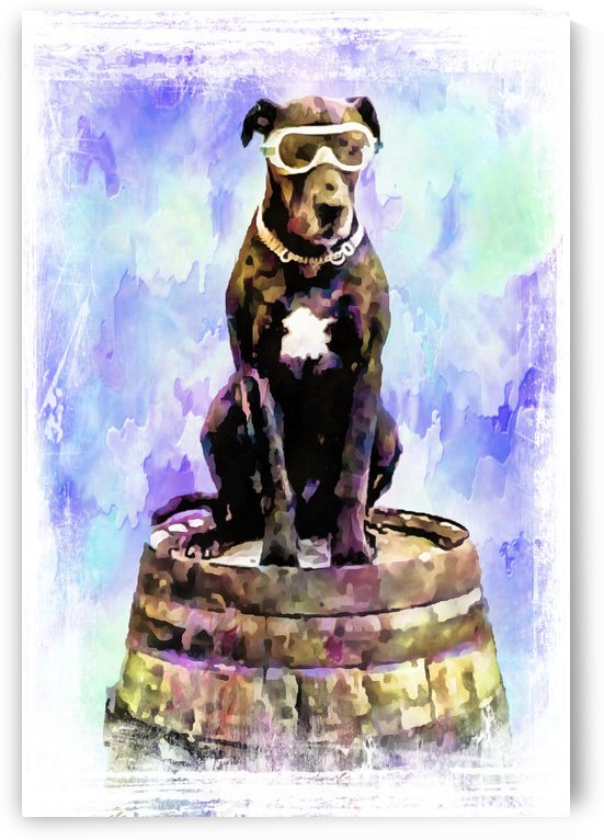 Great Dane with Biggles Complex by Dorothy Berry-Lound