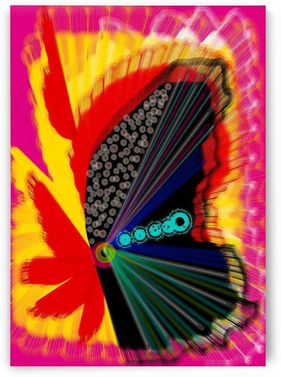 Butterfly  by A Herrera