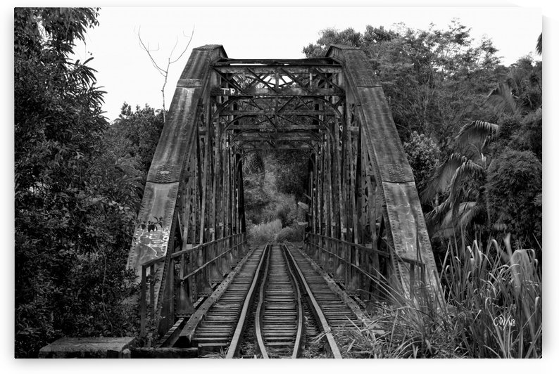 Bridge - XXXIV  by Carlos Wood