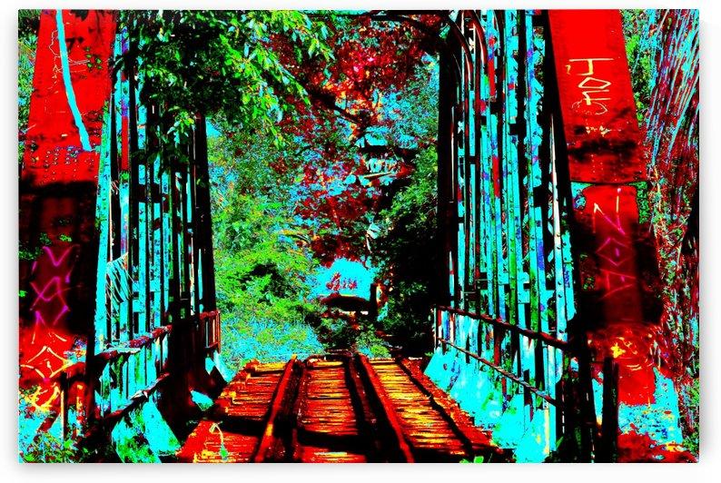 Bridge - XXXVIII by Carlos Wood