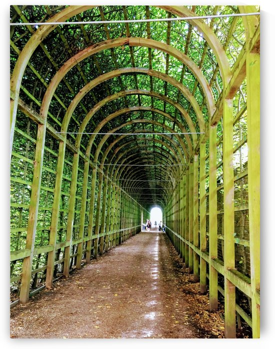 Tunnel of Life by Amna Hashmi