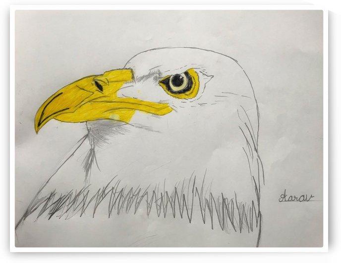 Egle Image by Aarav Gupta