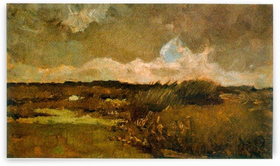 Marshy by Van Gogh by Van Gogh