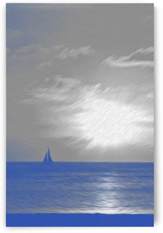 Night Sailing by David Pinter