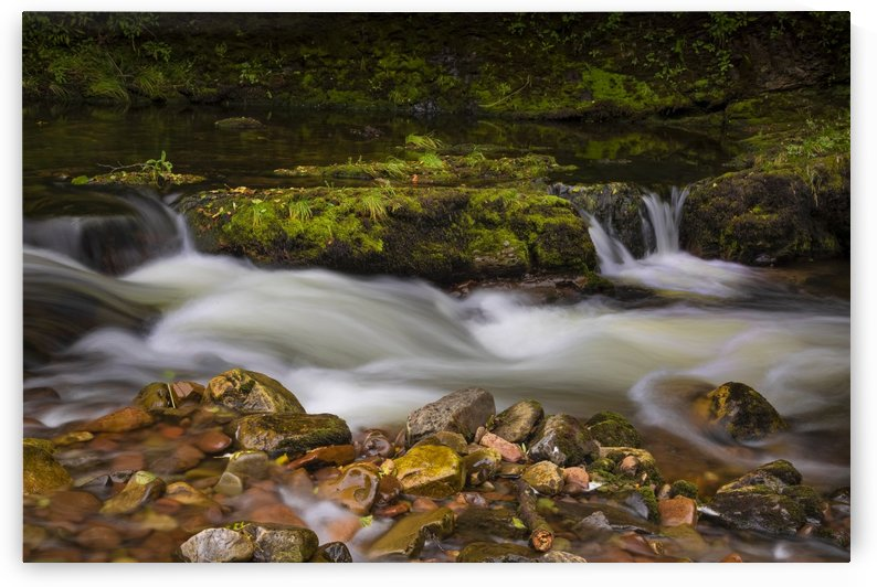 The River Tawe in Abercrave by Leighton Collins