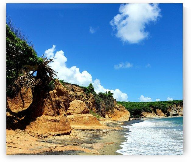 Black Sand Beach by Izzy