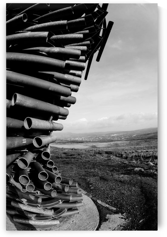 Ringing tree by Artsy Lens Uk
