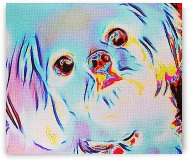 Iridescent Doggy by Frosty Jenson