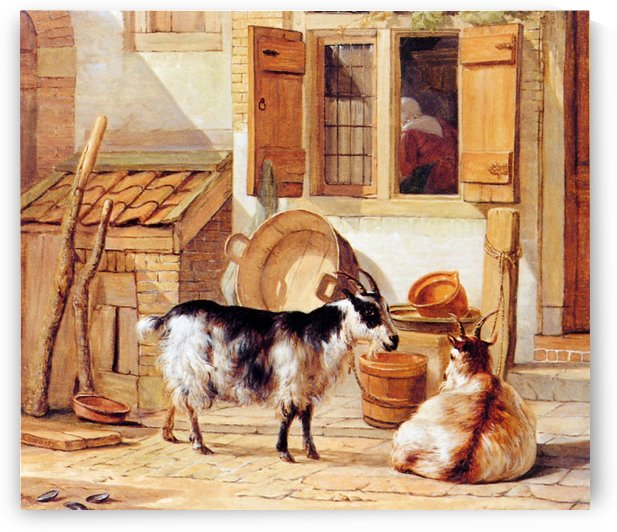 Goats in a yard by Abraham van Strij