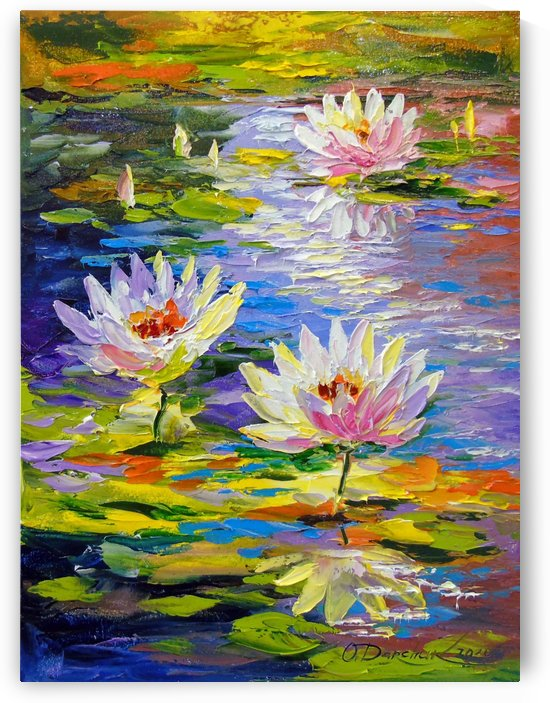 Water lilies in the pond by Olha Darchuk