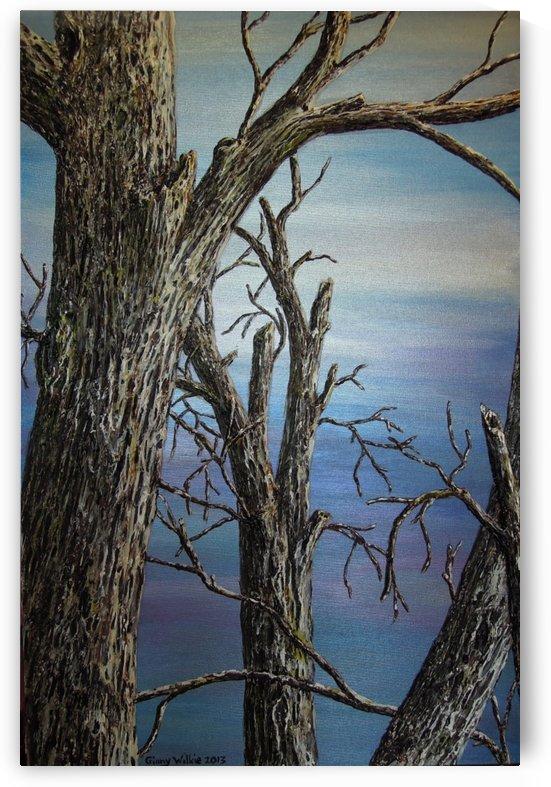 Blue Vista by Ginny Wilkie