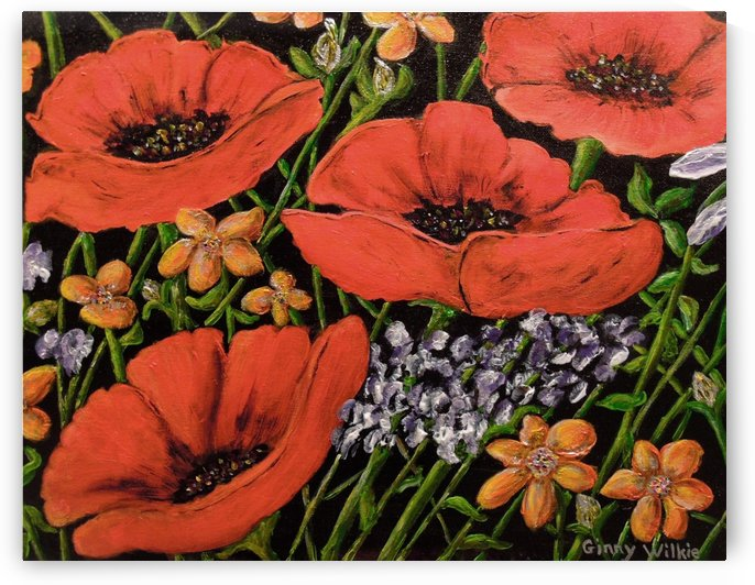 Four Poppies by Ginny Wilkie