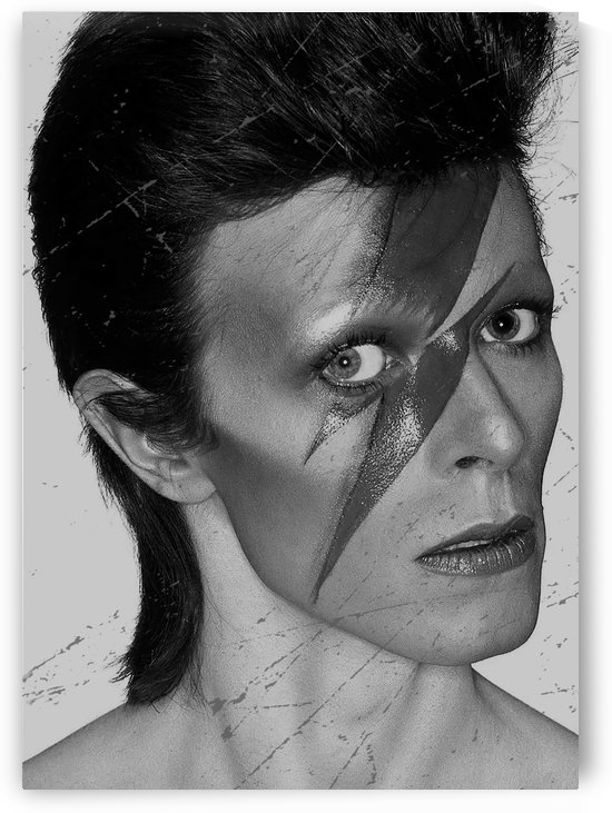 davidbowie3 by mimabags