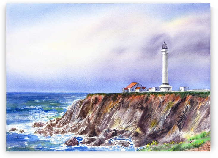 Lighthouse Point Arena California  by Irina Sztukowski