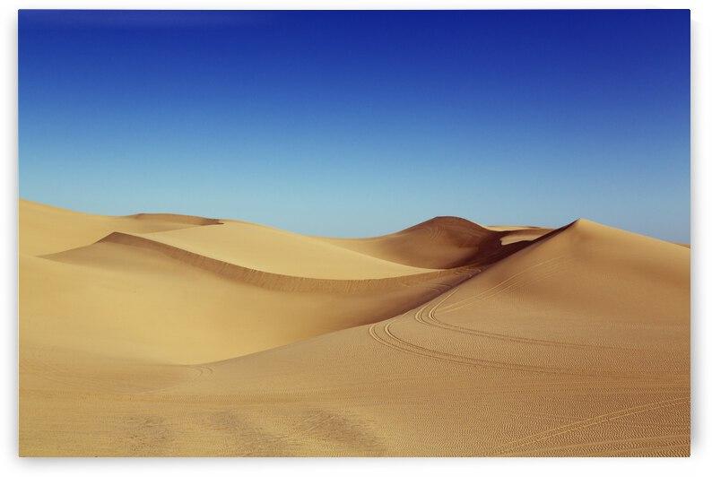 The imperial sand dunes  by Winston Mauricio Casco Sobalvarro