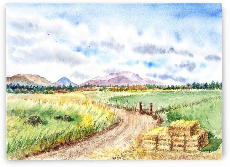 Farm Road The Mountains landsape by Irina Sztukowski
