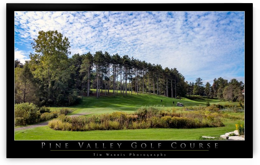 On the Links by Tim Warris Photography
