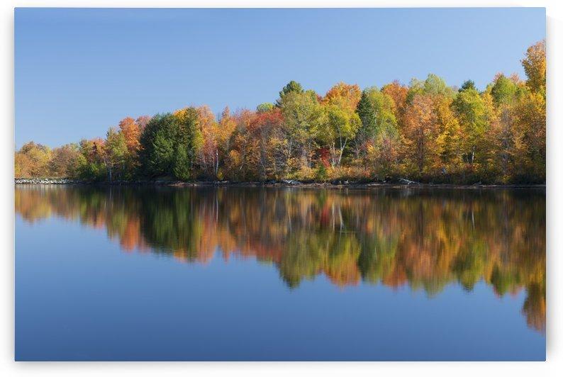 Colorful falls in Ontario by Moe Shirani