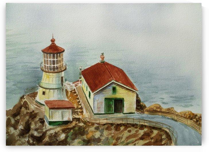 Lighthouse Point Reyes California by Irina Sztukowski