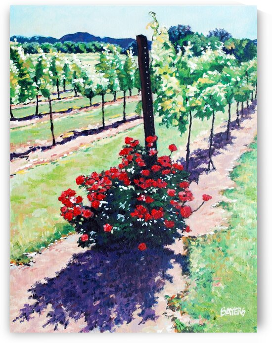 Roses on Vineyard by Rick Bayers