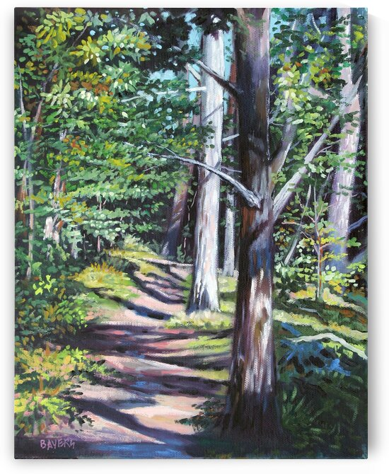 Nature Trail Path 2 by Rick Bayers