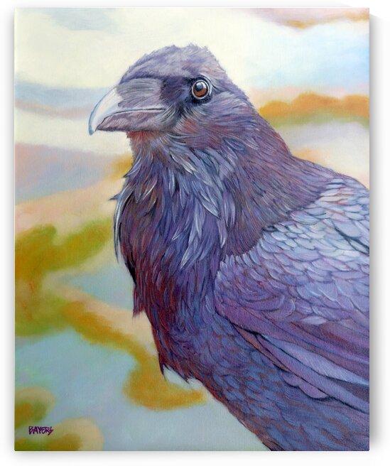Rainbow Raven by Rick Bayers