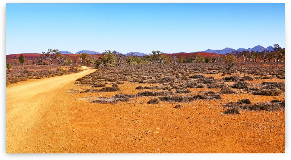 Track in the Outback 2 by Lexa Harpell