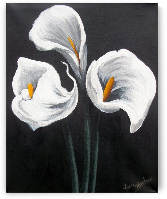 cala lilies by Tami Booher Appalachian Nature Painter