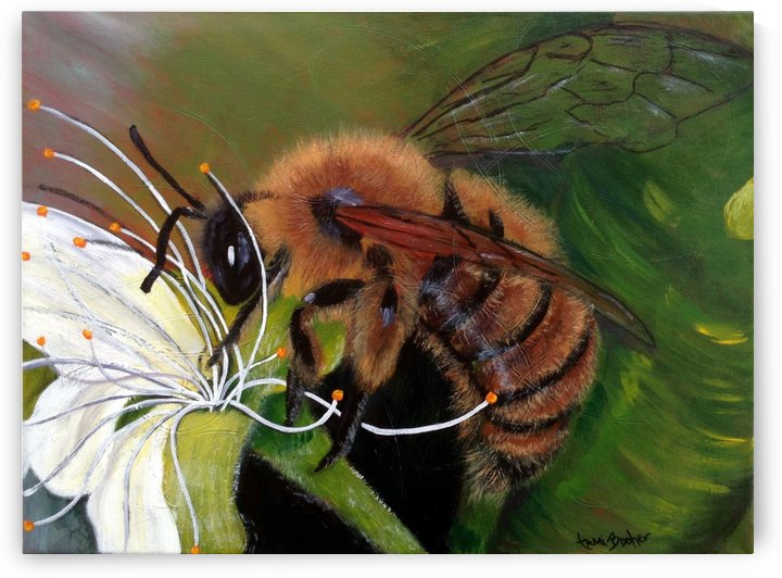 honey bee by Tami Booher Appalachian Nature Painter