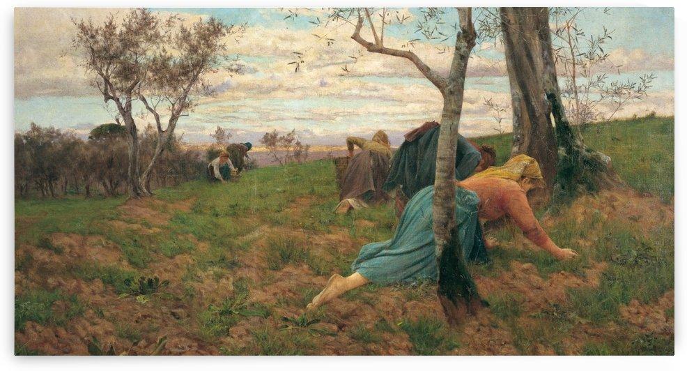 Women working by Adolfo Tommasi