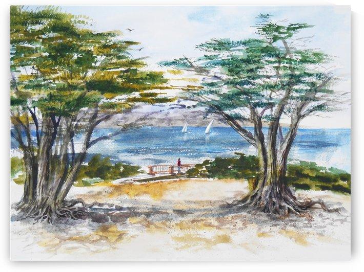 Carmel By The Sea California by Irina Sztukowski