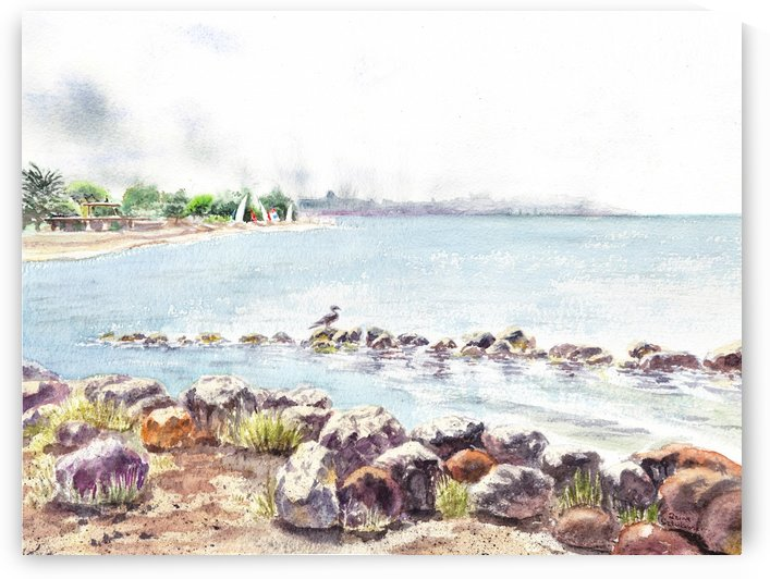 Crab Cove Alameda California by Irina Sztukowski