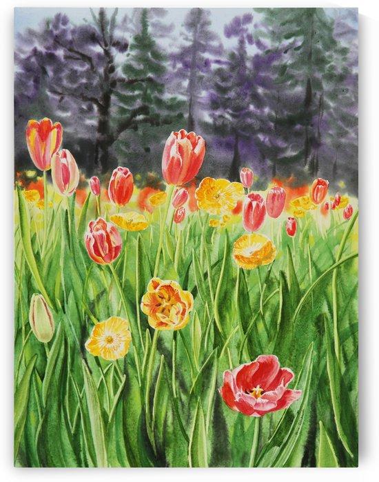Tulip Garden in San Francisco by Irina Sztukowski