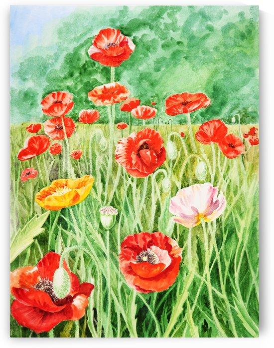 Poppy Field by Irina Sztukowski