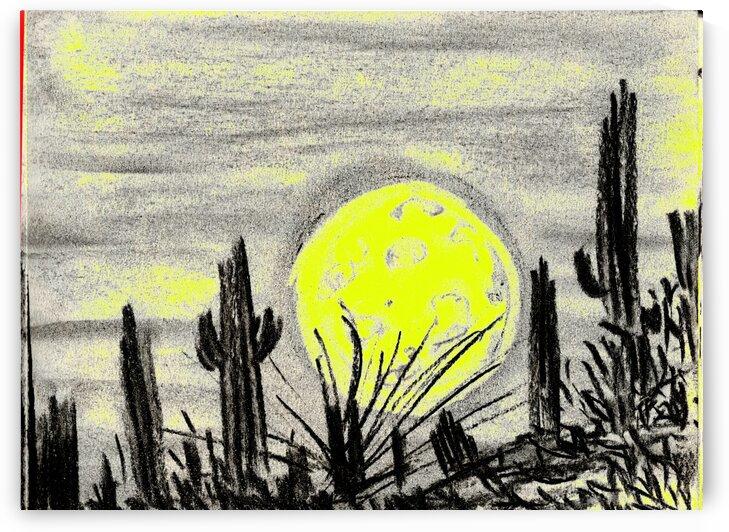 Desert moon by Oletydraw