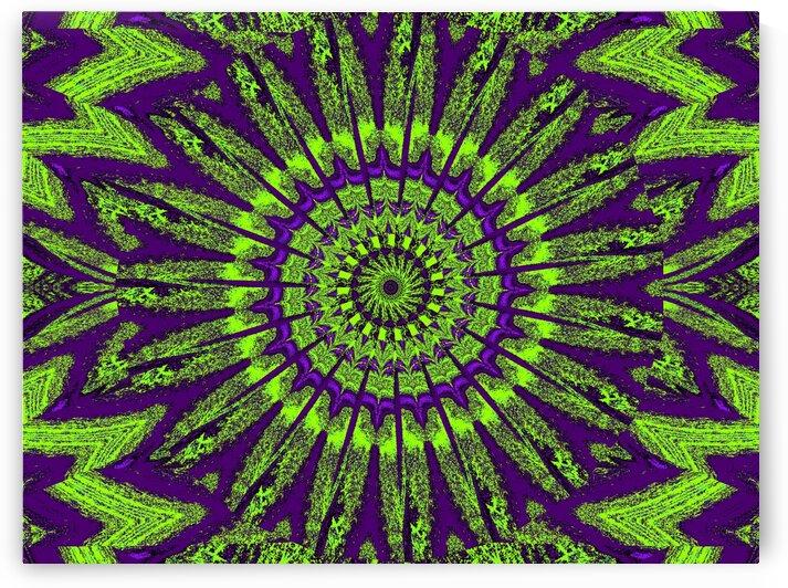 Purple Summer by Sherrie Larch