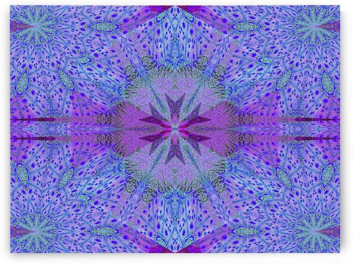 Strange Little Purple Flower by Sherrie Larch