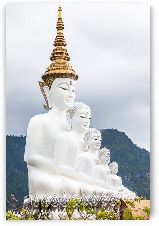 Five Buddhas by Marcel Derweduwen