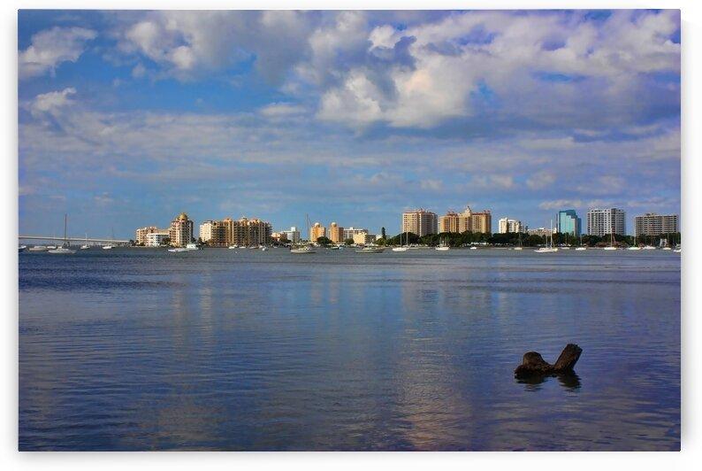 Sarasota Skyline by HH Photography of Florida