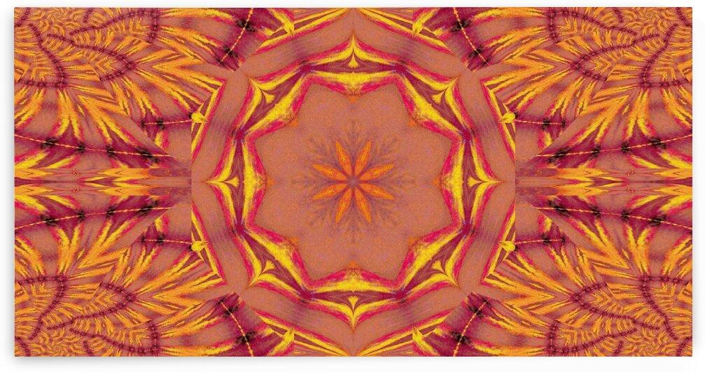Lotus Bloom Of Lakshmi by Sherrie Larch