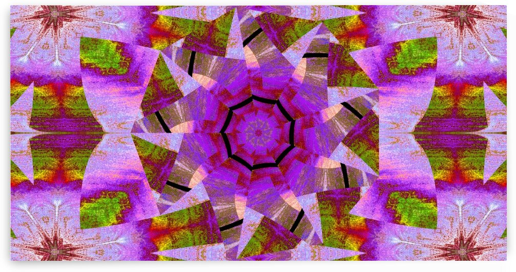 Spinning Lotus 1 by Sherrie Larch