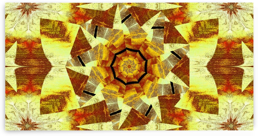 Spinning Lotus 3 by Sherrie Larch