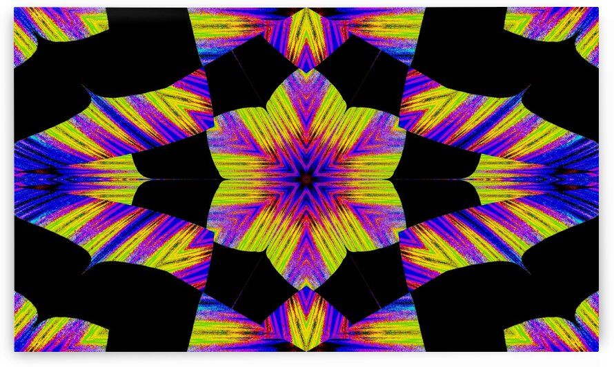 Yellow Pink And Blue Lotus In Black by Sherrie Larch