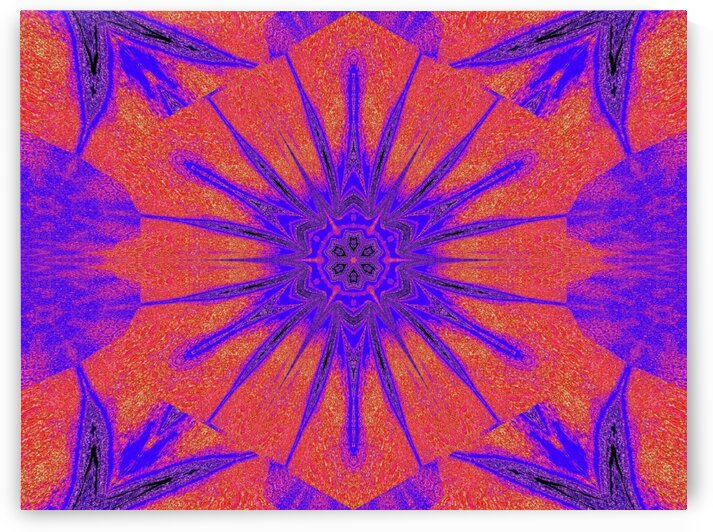 Lotus And Sunshine 1 by Sherrie Larch