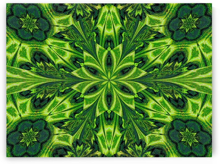 Green Lotus by Sherrie Larch