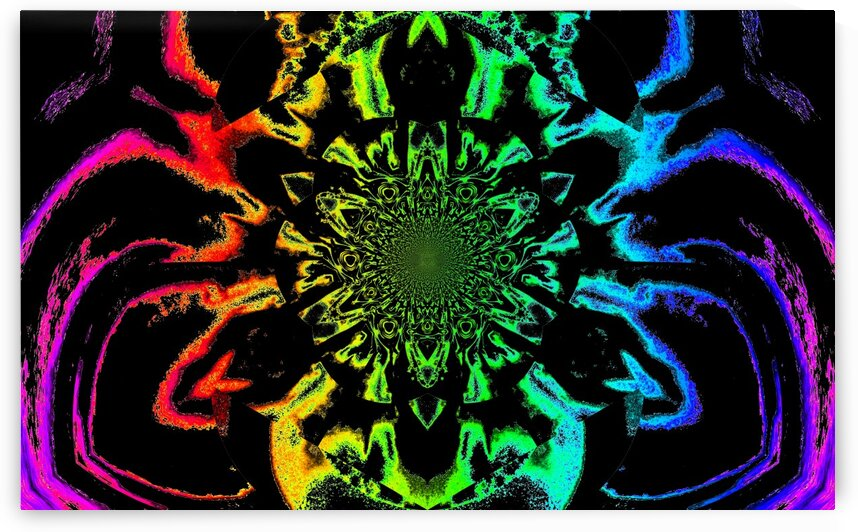 Lotus In Black And Rainbow Satin by Sherrie Larch