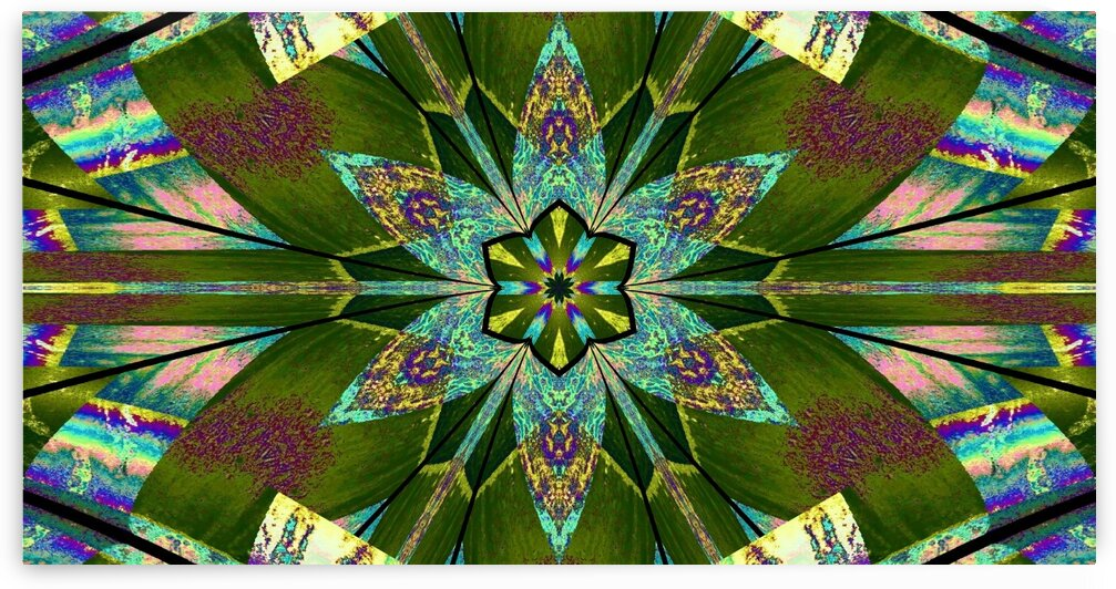 A Valley Lotus In Summertime 2 by Sherrie Larch