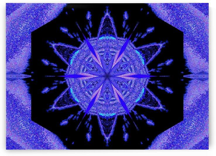 Sky Flower 2 by Sherrie Larch
