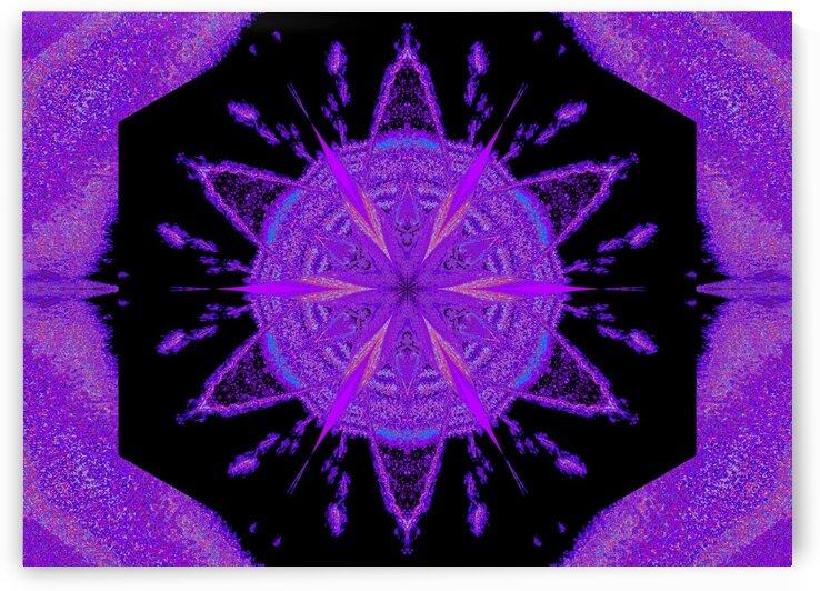 Sky Flower 3 by Sherrie Larch