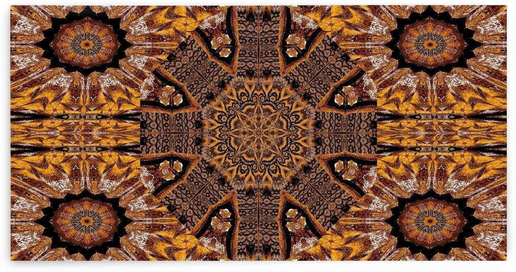 Tibetan Golden Lotus 6 by Sherrie Larch